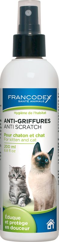 anti-griffures-chaton-chat.jpg
